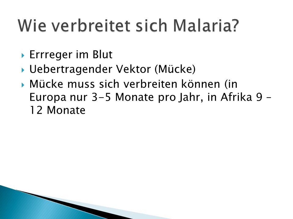 Errreger im Blut Uebertragender Vektor (Mücke) Mücke muss sich verbreiten können (in Europa nur 3-5 Monate pro Jahr, in Afrika 9 – 12 Monate