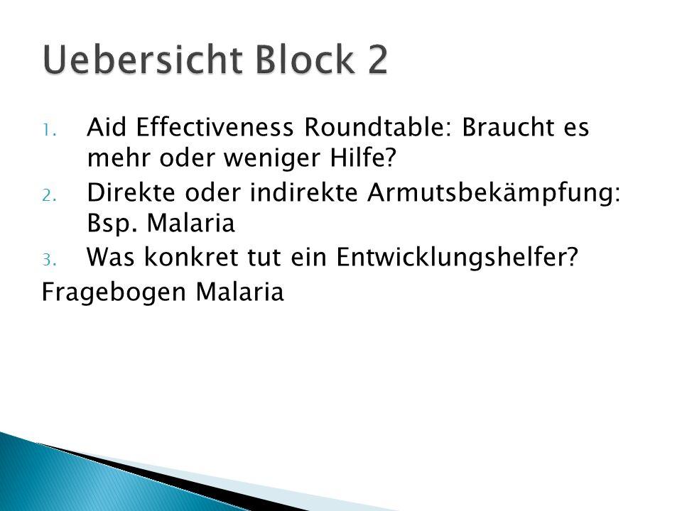 1. Aid Effectiveness Roundtable: Braucht es mehr oder weniger Hilfe? 2. Direkte oder indirekte Armutsbekämpfung: Bsp. Malaria 3. Was konkret tut ein E