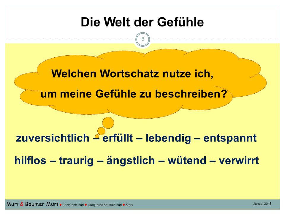 Die Welt der Gefühle Müri & Baumer Müri Christoph Müri Jacqueline Baumer Müri Stels Januar 2013 8 hilflos – traurig – ängstlich – wütend – verwirrt zu