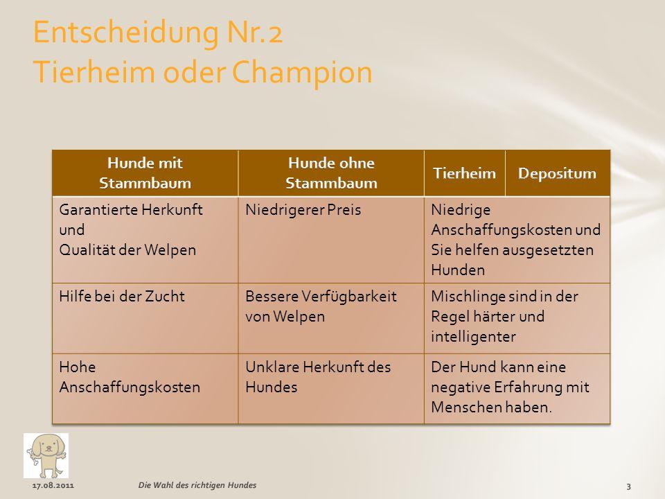 17.08.20113Die Wahl des richtigen Hundes Entscheidung Nr.2 Tierheim oder Champion