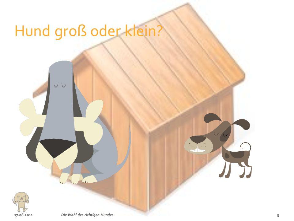 17.08.20114Die Wahl des richtigen Hundes Beliebteste Hunderassen