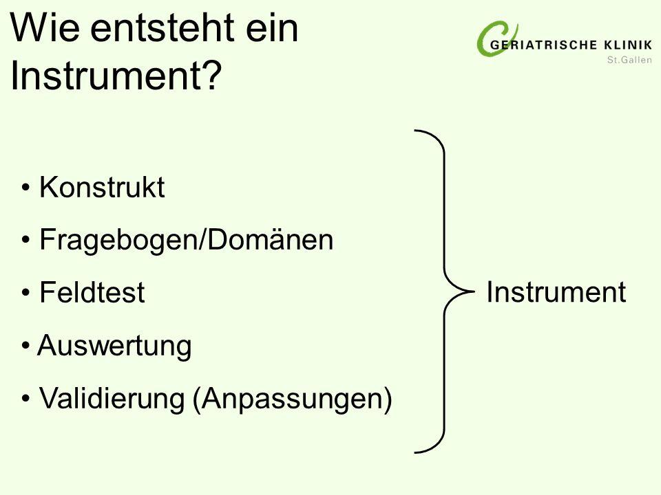 Fragebogen/Domänen Feldtest Auswertung Validierung (Anpassungen) Wie entsteht ein Instrument? Instrument