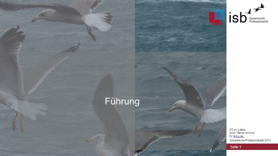 Lern-Kultur Seite 22 CC-by-Lizenz, Autor: Bernd Schmid für isb-w.euisb-w.eu Systemische Professionalität 2013