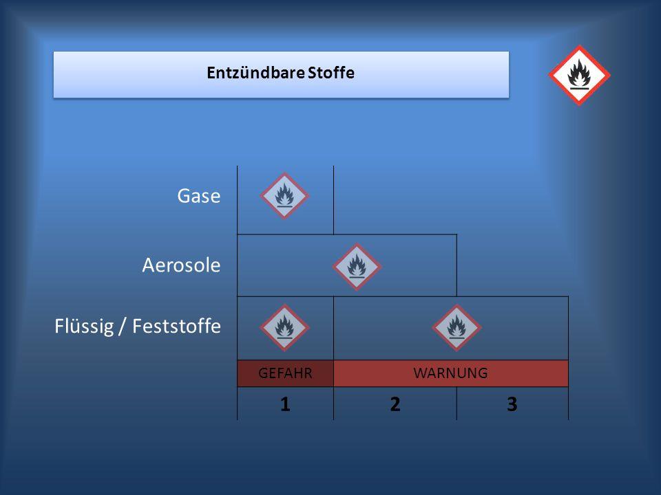 GEFAHRWARNUNG 123 Entzündbare Stoffe Aerosole Flüssig / Feststoffe Gase