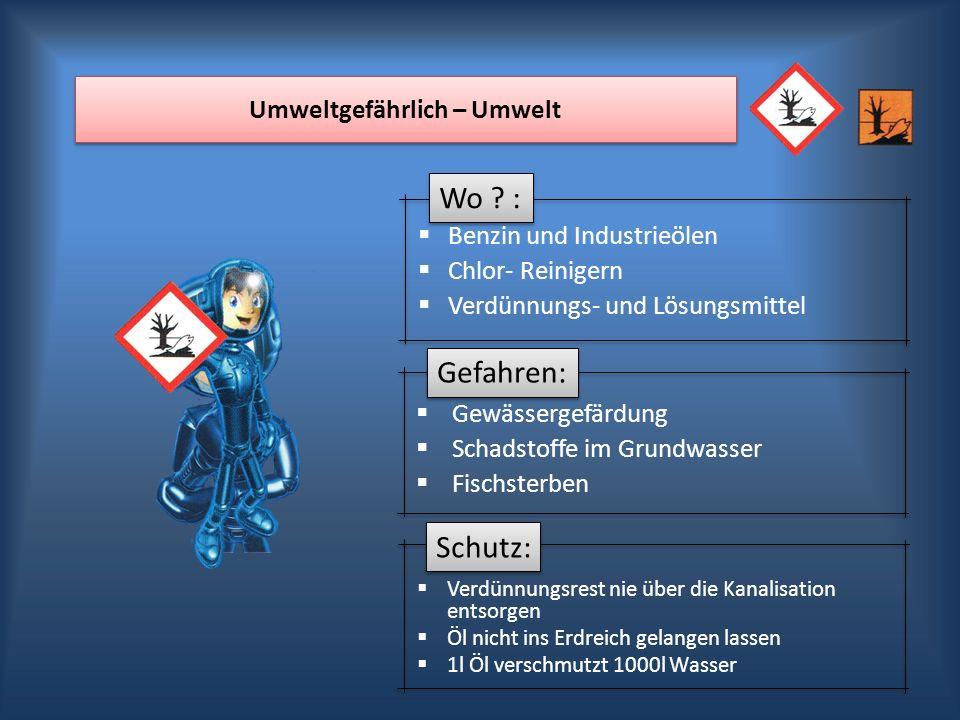 Wo ? : Gefahren: Schutz: Umweltgefährlich – Umwelt Benzin und Industrieölen Chlor- Reinigern Verdünnungs- und Lösungsmittel Gewässergefärdung Schadsto
