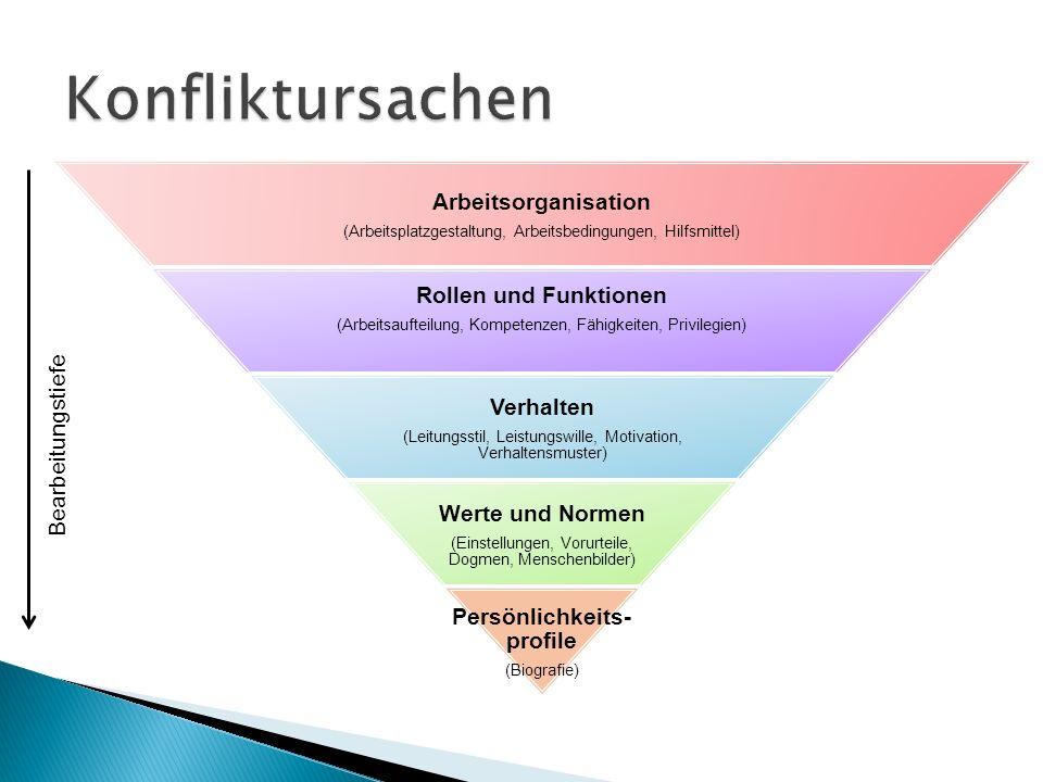 Bearbeitungstiefe Arbeitsorganisation (Arbeitsplatzgestaltung, Arbeitsbedingungen, Hilfsmittel) Rollen und Funktionen (Arbeitsaufteilung, Kompetenzen,
