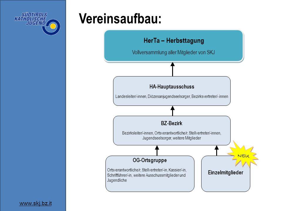 Vereinsaufbau: www.skj.bz.it BZ-Bezirk Bezirksleiter/-innen, Ortsverantwortliche/r, Stellvertreter/-innen, Jugendseelsorger, weitere Mitglieder OG-Ort