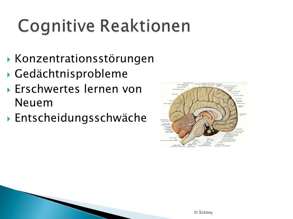 Konzentrationsstörungen Gedächtnisprobleme Erschwertes lernen von Neuem Entscheidungsschwäche W.Schöny