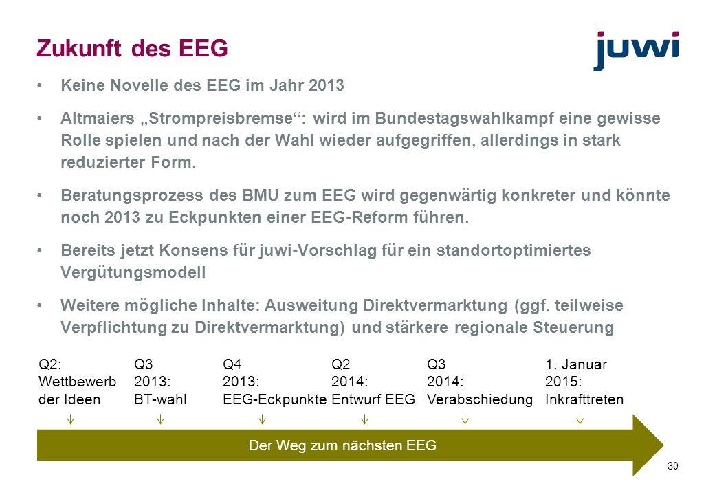 30 Zukunft des EEG Keine Novelle des EEG im Jahr 2013 Altmaiers Strompreisbremse: wird im Bundestagswahlkampf eine gewisse Rolle spielen und nach der