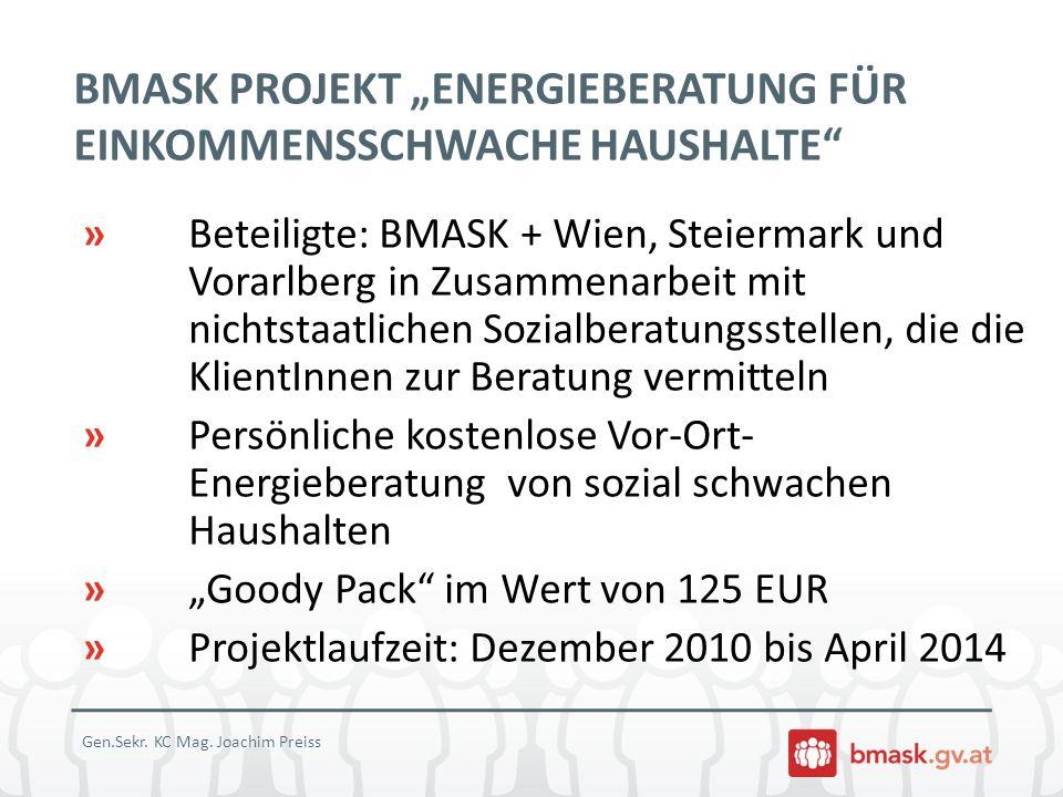 BMASK PROJEKT ENERGIEBERATUNG FÜR EINKOMMENSSCHWACHE HAUSHALTE » Beteiligte: BMASK + Wien, Steiermark und Vorarlberg in Zusammenarbeit mit nichtstaatl
