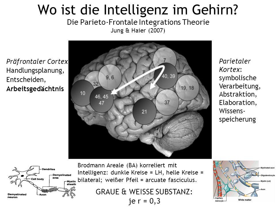 Wo ist die Intelligenz im Gehirn? Die Parieto-Frontale Integrations Theorie Jung & Haier (2007) Brodmann Areale (BA) korreliert mit Intelligenz: dunkl