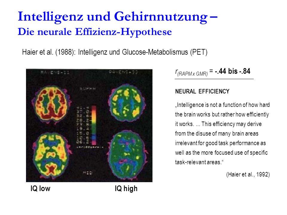 Intelligenz und Gehirnnutzung – Die neurale Effizienz-Hypothese Haier et al. (1988): Intelligenz und Glucose-Metabolismus (PET) IQ lowIQ high NEURAL E