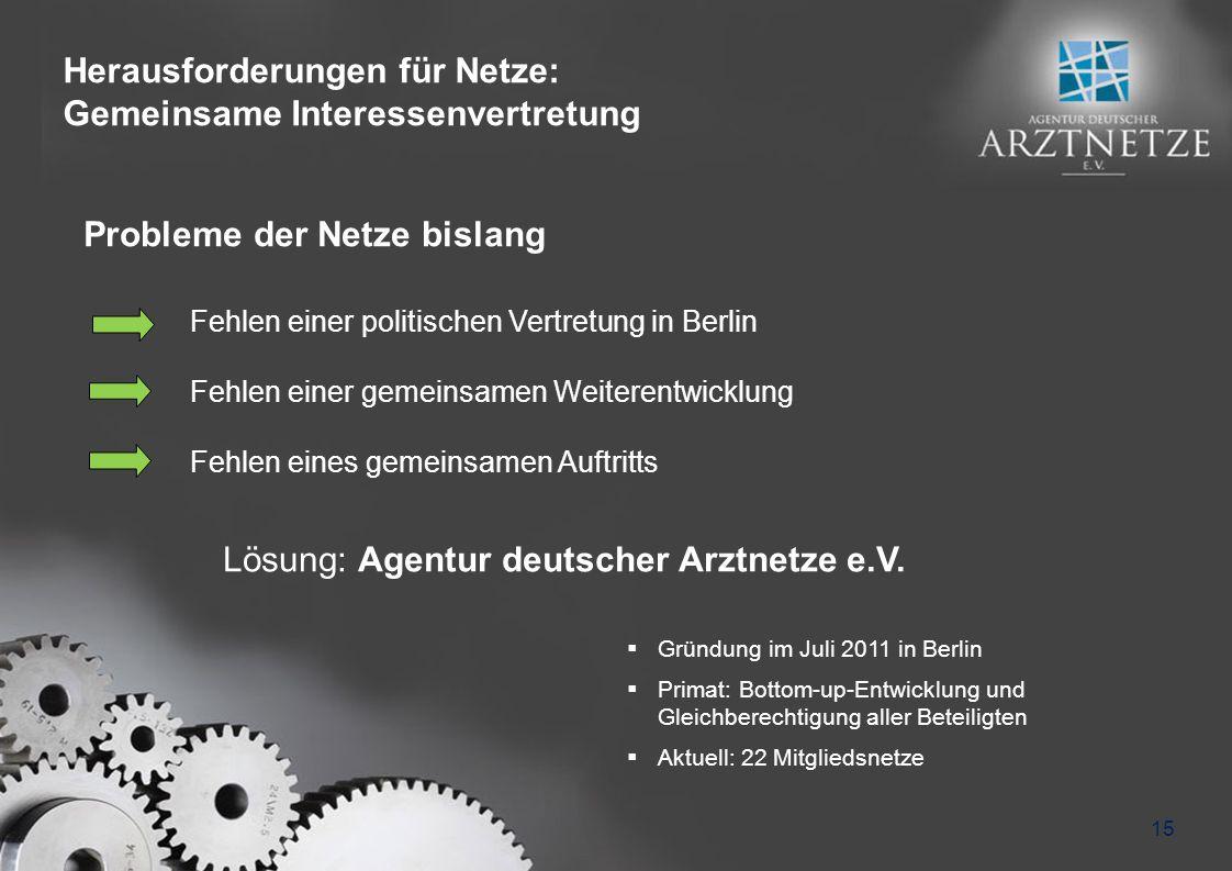 Herausforderungen für Netze: Gemeinsame Interessenvertretung 15 Fehlen einer politischen Vertretung in Berlin Fehlen einer gemeinsamen Weiterentwicklu