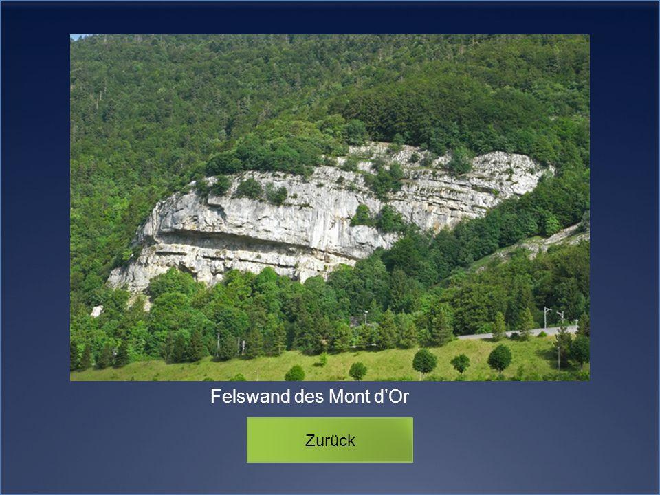 Zurück Felswand des Mont dOr