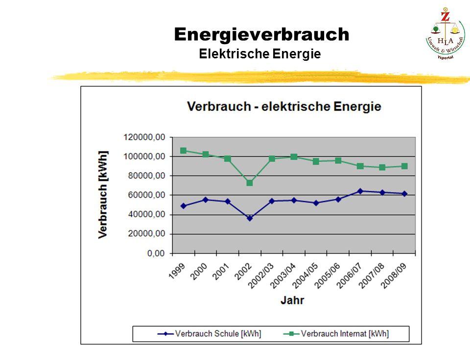 Energieverbrauch Elektrische Energie