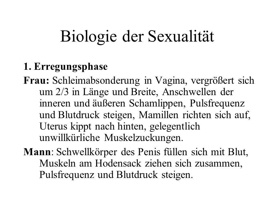 Biologie der Sexualität 1. Erregungsphase Frau: Schleimabsonderung in Vagina, vergrößert sich um 2/3 in Länge und Breite, Anschwellen der inneren und