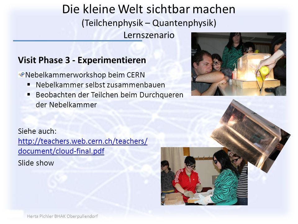 Die kleine Welt sichtbar machen (Teilchenphysik – Quantenphysik) Lernszenario Visit Phase 3 - Experimentieren Nebelkammerworkshop beim CERN Nebelkamme