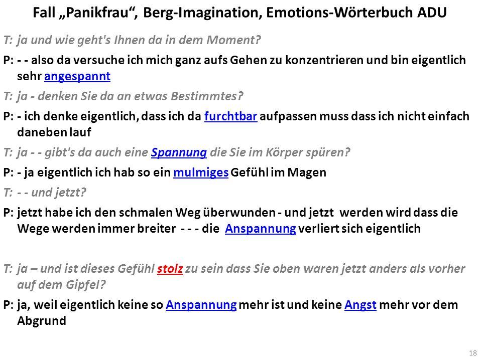 Fall Panikfrau, Berg-Imagination, Emotions-Wörterbuch ADU T:ja und wie geht's Ihnen da in dem Moment? P:- - also da versuche ich mich ganz aufs Gehen