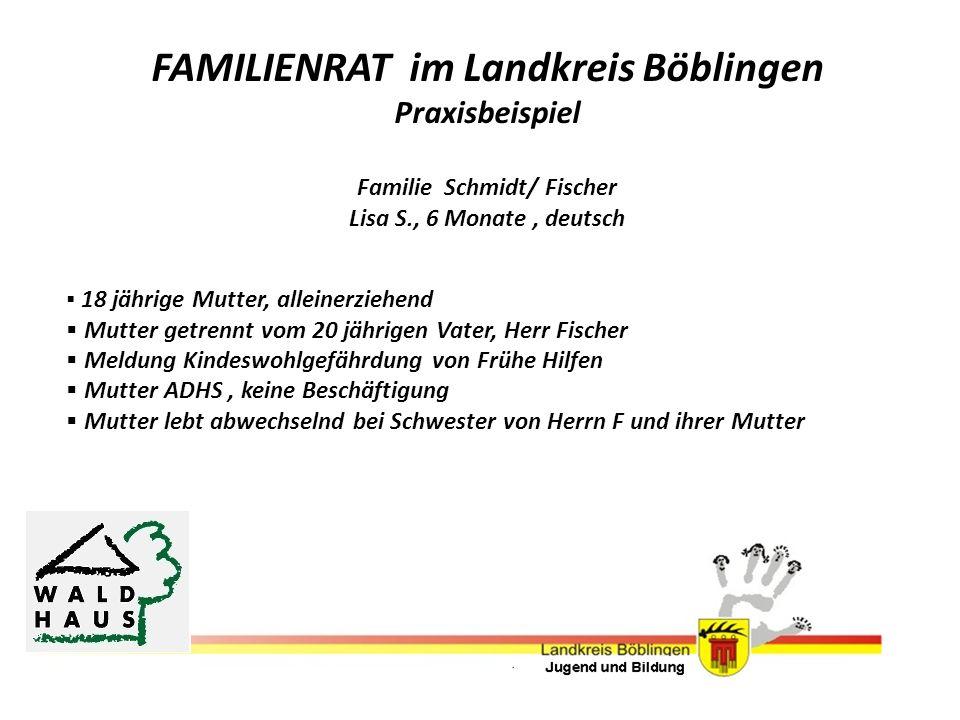 FAMILIENRAT im Landkreis Böblingen Praxisbeispiel Familie Schmidt/ Fischer Lisa S., 6 Monate, deutsch 18 jährige Mutter, alleinerziehend Mutter getren