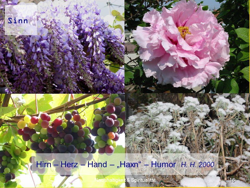 16 Nachhaltigkeit & Spiritualität Sinn Hirn – Herz – Hand – Haxn – Humor H. H. 2000