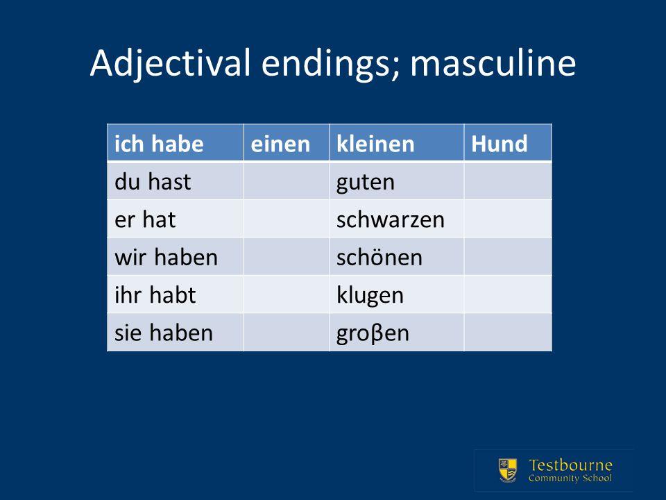 Adjectival endings; masculine ich habeeinenkleinenHund du hastguten er hatschwarzen wir habenschönen ihr habtklugen sie habengroβen
