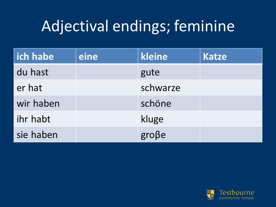 Adjectival endings; feminine ich habeeinekleineKatze du hastgute er hatschwarze wir habenschöne ihr habtkluge sie habengroβe