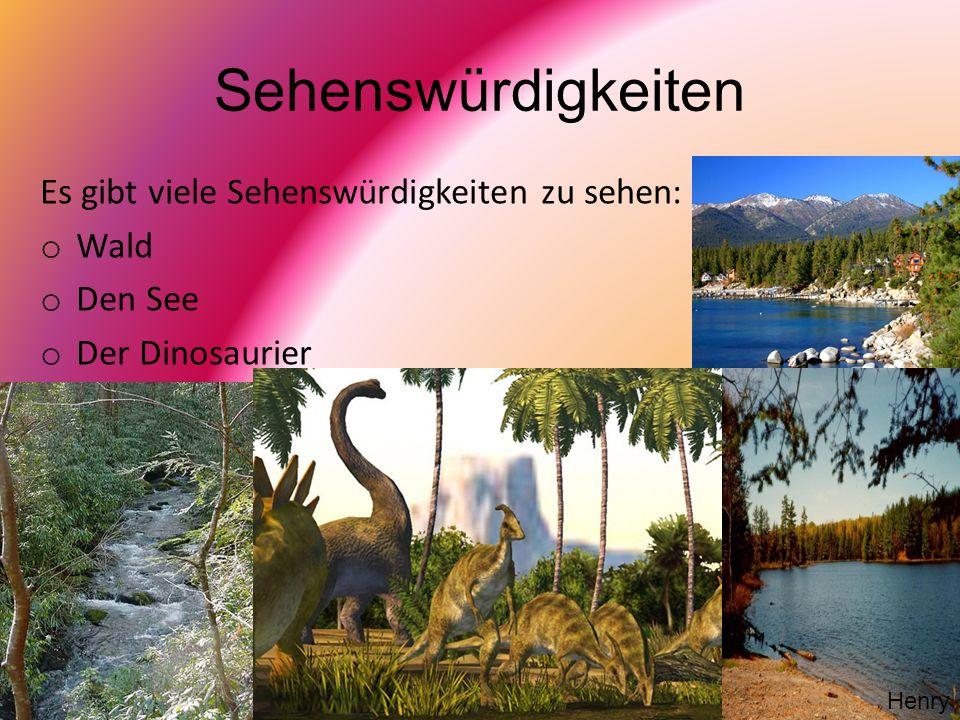 Sehenswürdigkeiten Es gibt viele Sehenswürdigkeiten zu sehen: o Wald o Den See o Der Dinosaurier Henry