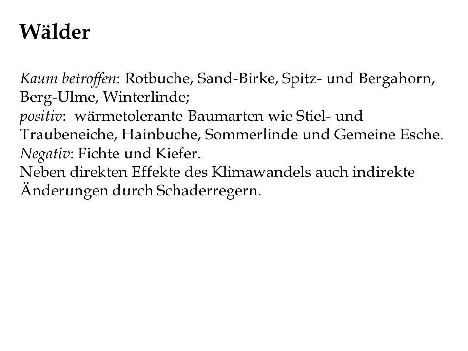 Wälder Kaum betroffen : Rotbuche, Sand-Birke, Spitz- und Bergahorn, Berg-Ulme, Winterlinde; positiv : wärmetolerante Baumarten wie Stiel- und Traubene