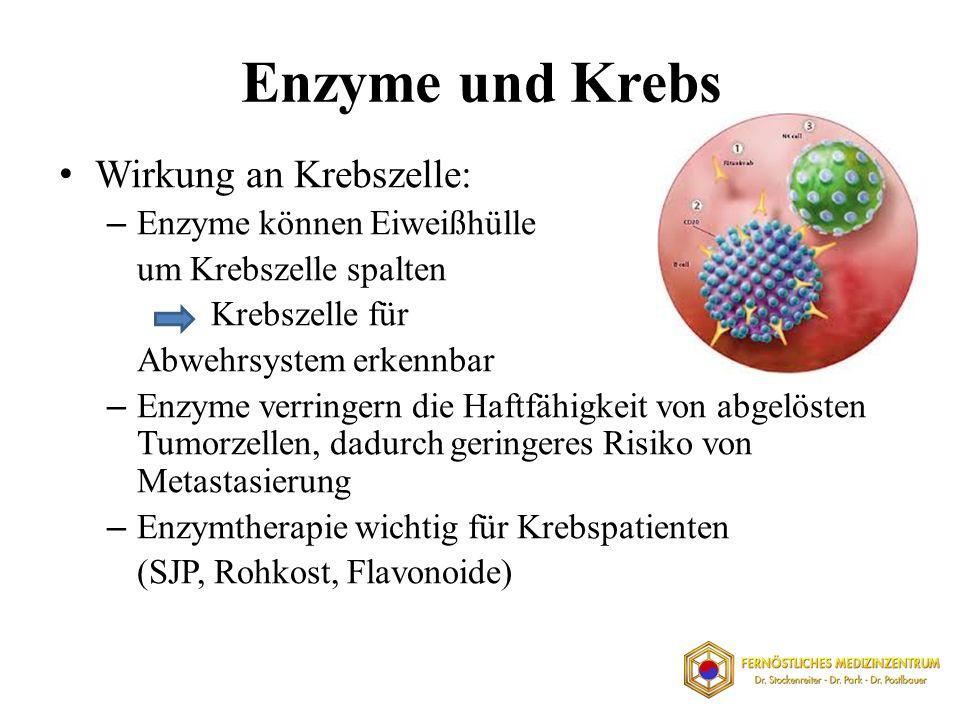 Enzyme und Krebs Wirkung an Krebszelle: – Enzyme können Eiweißhülle um Krebszelle spalten Krebszelle für Abwehrsystem erkennbar – Enzyme verringern di