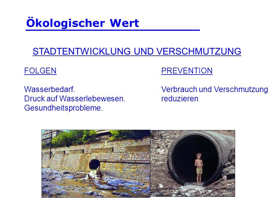 FOLGEN Wasserbedarf. Druck auf Wasserlebewesen. Gesundheitsprobleme. PREVENTION Verbrauch und Verschmutzung reduzieren STADTENTWICKLUNG UND VERSCHMUTZ