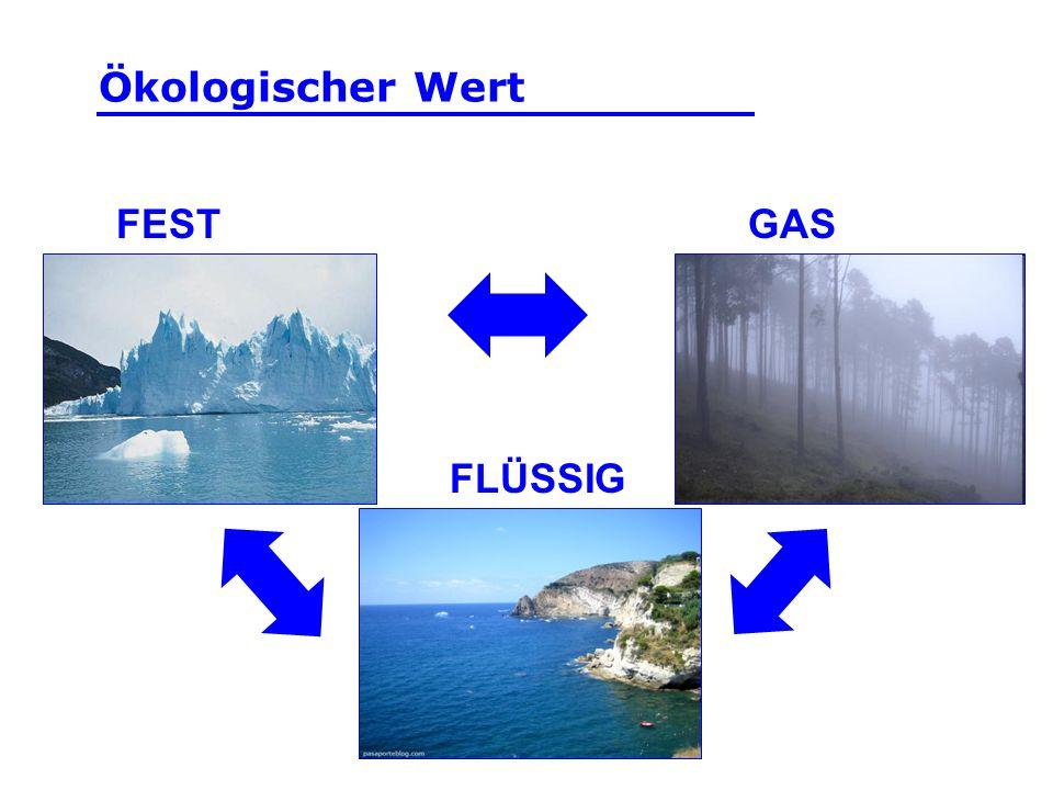 FEST FLÜSSIG GAS Ökologischer Wert