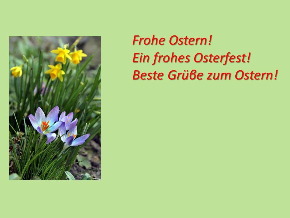 Frohe Ostern! Ein frohes Osterfest! Beste Grüβe zum Ostern!