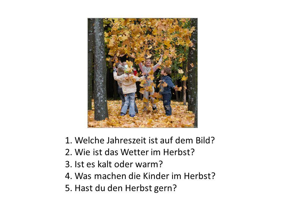 1. Welche Jahreszeit ist auf dem Bild? 2. Wie ist das Wetter im Herbst? 3. Ist es kalt oder warm? 4. Was machen die Kinder im Herbst? 5. Hast du den H