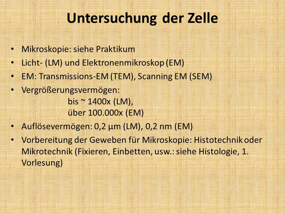 Untersuchung der Zelle Mikroskopie: siehe Praktikum Licht- (LM) und Elektronenmikroskop (EM) EM: Transmissions-EM (TEM), Scanning EM (SEM) Vergrößerun
