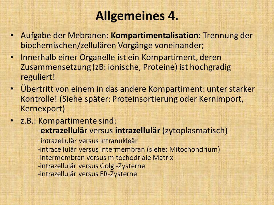 Allgemeines 4. Aufgabe der Mebranen: Kompartimentalisation: Trennung der biochemischen/zellulären Vorgänge voneinander; Innerhalb einer Organelle ist