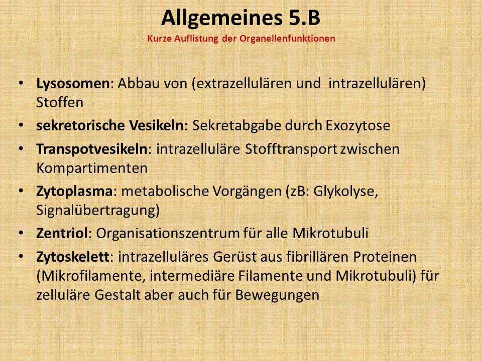 Allgemeines 6.