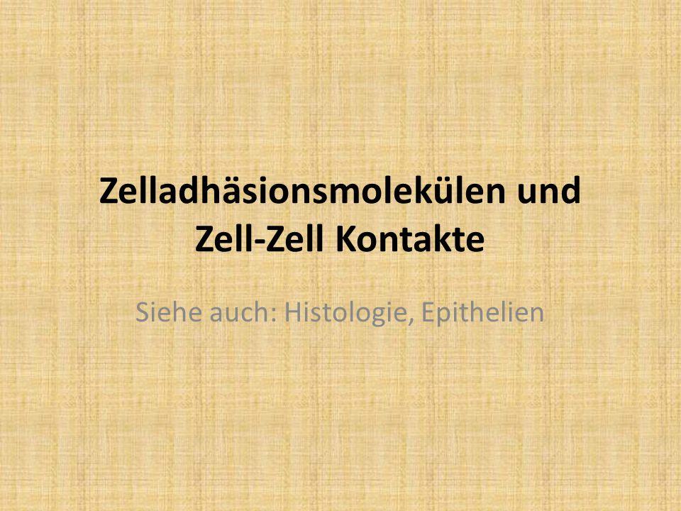 Zelladhäsionsmolekülen und Zell-Zell Kontakte Siehe auch: Histologie, Epithelien