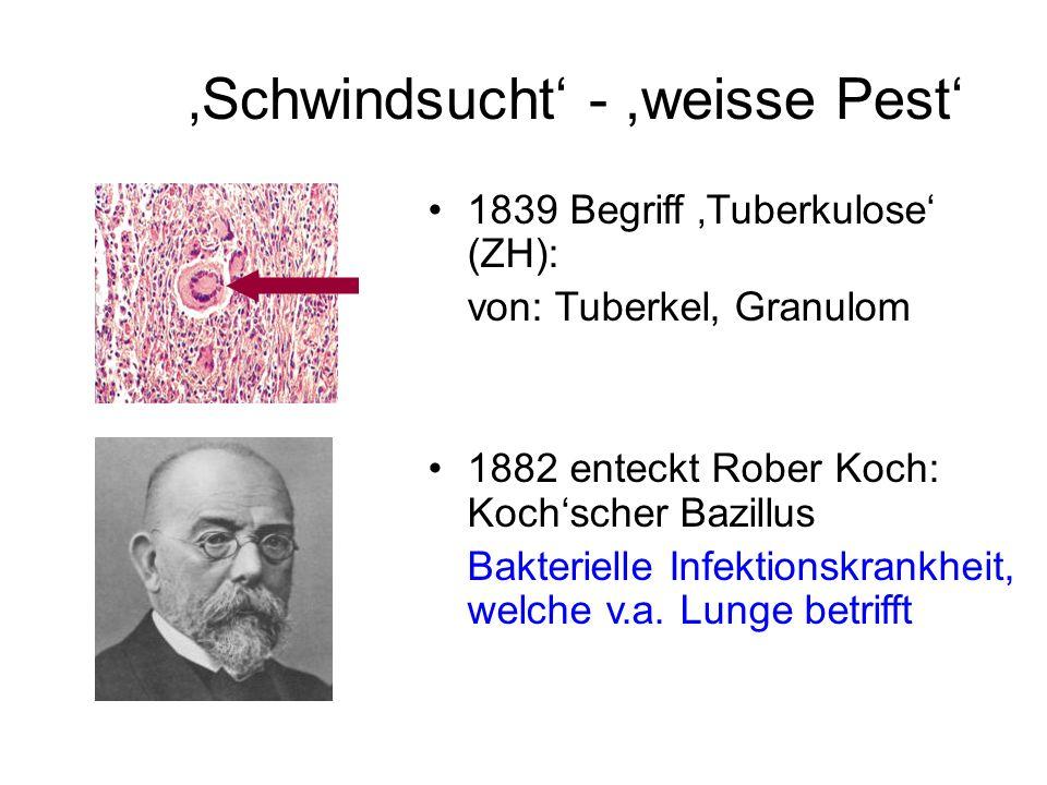 Schwindsucht -,weisse Pest 1839 Begriff Tuberkulose (ZH): von: Tuberkel, Granulom 1882 enteckt Rober Koch: Kochscher Bazillus Bakterielle Infektionskr