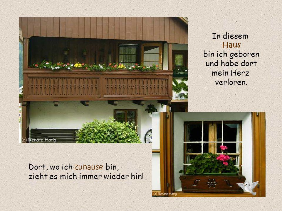 In diesem Haus bin ich geboren und habe dort mein Herz verloren.