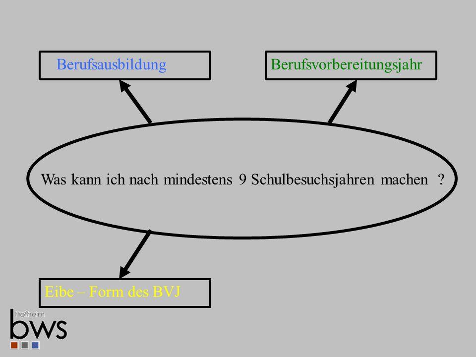 Berufsausbildung Eibe – Form des BVJ Was kann ich nach mindestens 9 Schulbesuchsjahren machen .