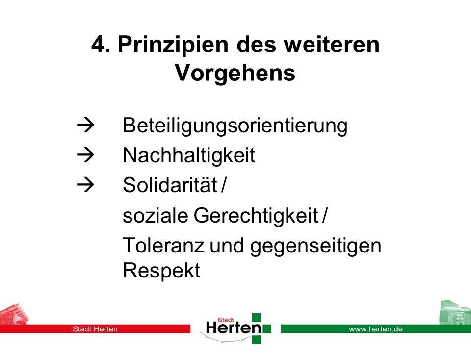 4. Prinzipien des weiteren Vorgehens Beteiligungsorientierung Nachhaltigkeit Solidarität / soziale Gerechtigkeit / Toleranz und gegenseitigen Respekt