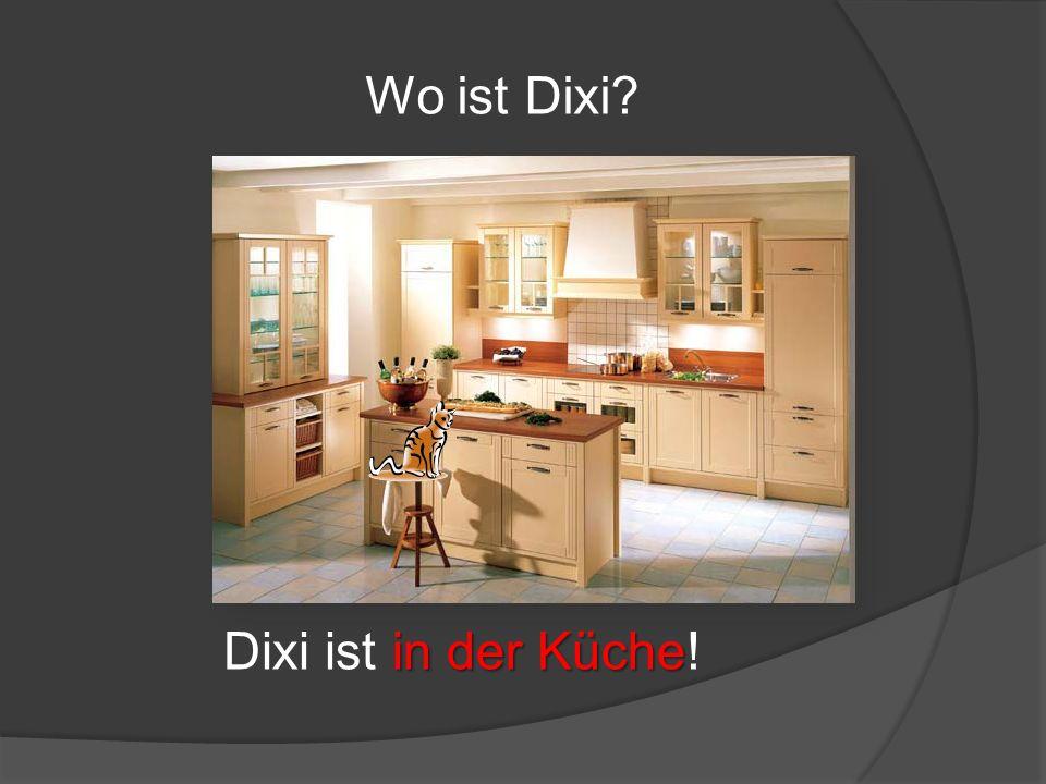 Wo ist Dixi? in der Küche Dixi ist in der Küche!