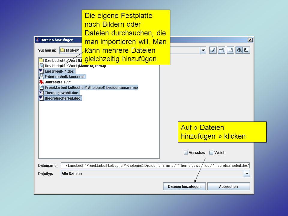 Die eigene Festplatte nach Bildern oder Dateien durchsuchen, die man importieren will. Man kann mehrere Dateien gleichzeitig hinzufügen Auf « Dateien