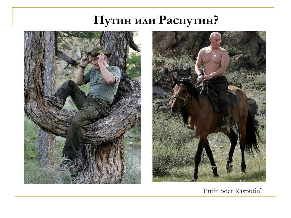 Путин или Распутин? Putin oder Rasputin?