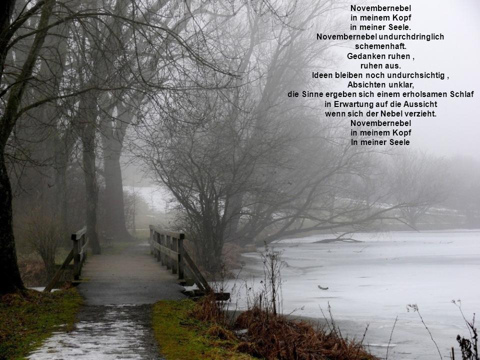 Novembernebel in meinem Kopf in meiner Seele. Novembernebel undurchdringlich schemenhaft. Gedanken ruhen, ruhen aus. Ideen bleiben noch undurchsichtig