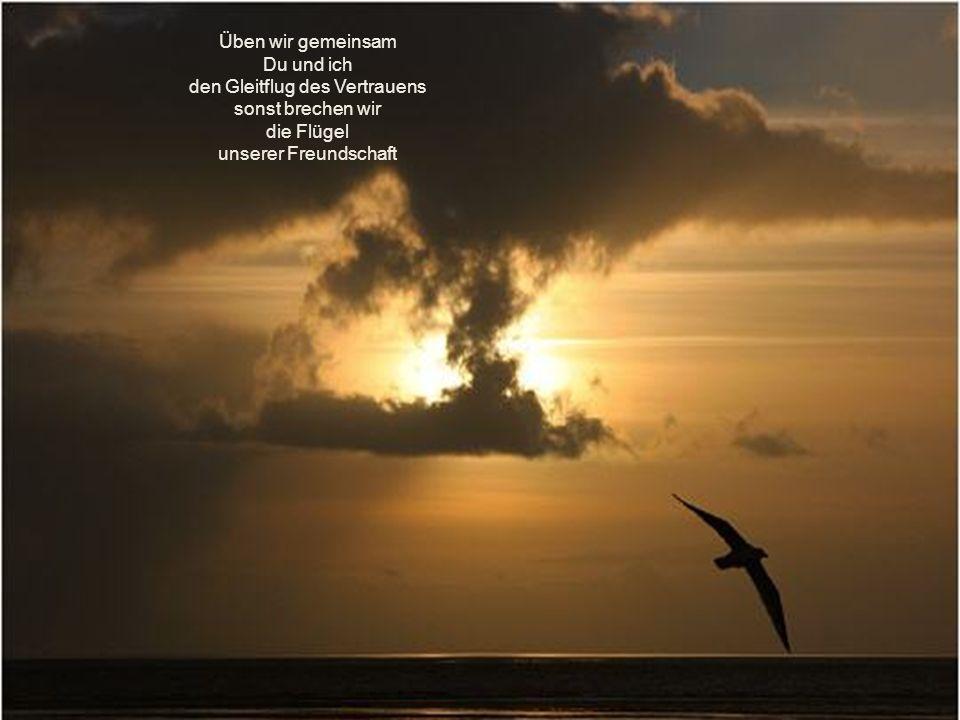 Üben wir gemeinsam Du und ich den Gleitflug des Vertrauens sonst brechen wir die Flügel unserer Freundschaft
