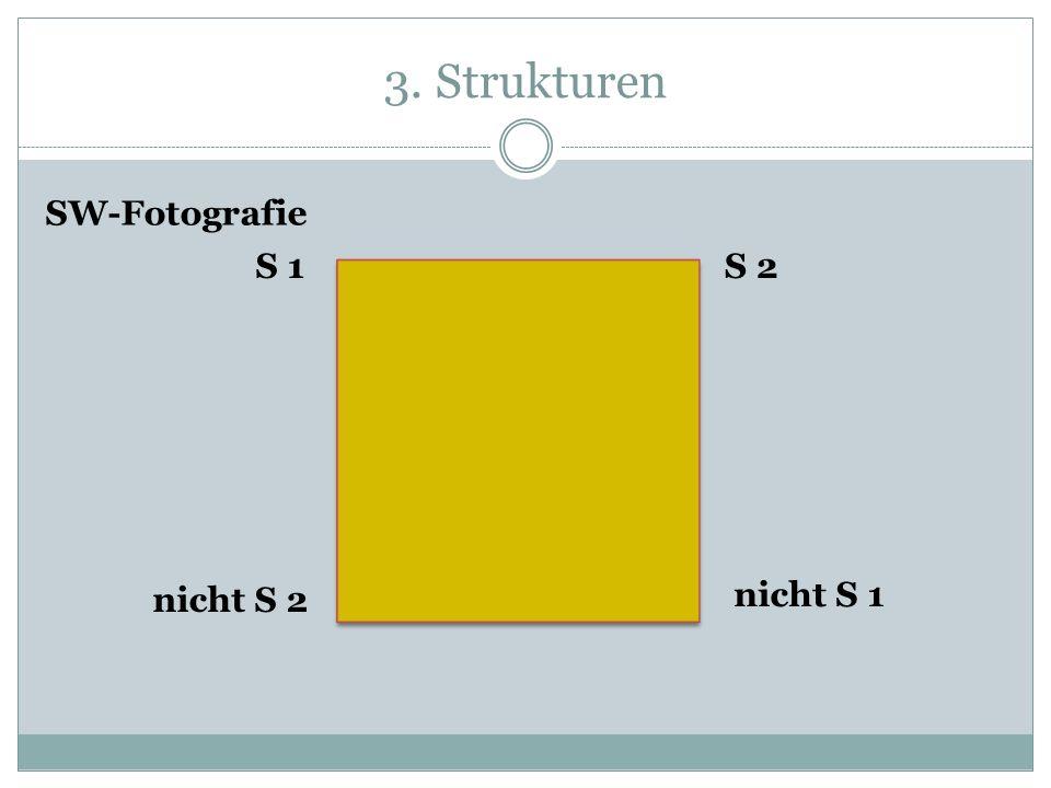 3. Strukturen S 1S 2 nicht S 1 nicht S 2 SW-Fotografie