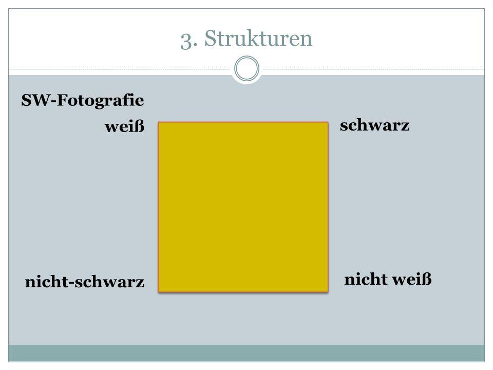 3. Strukturen weiß schwarz nicht weiß nicht-schwarz SW-Fotografie