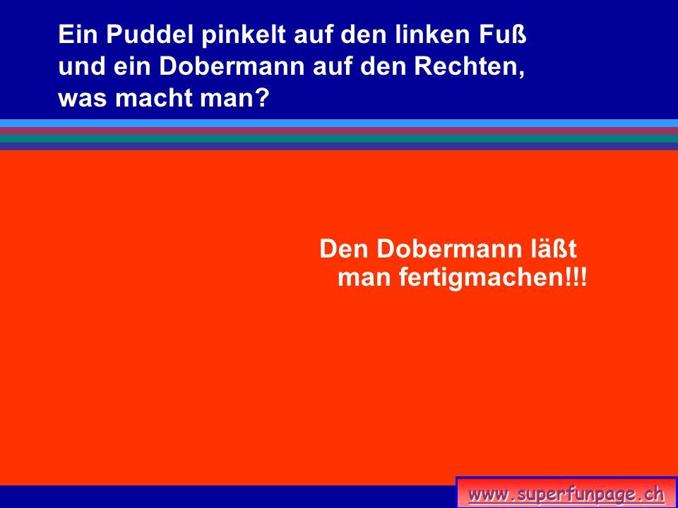 www.superfunpage.ch Ein Puddel pinkelt auf den linken Fuß und ein Dobermann auf den Rechten, was macht man? Den Dobermann läßt man fertigmachen!!!