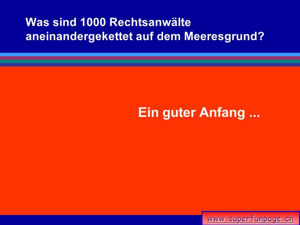 www.superfunpage.ch Was sind 1000 Rechtsanwälte aneinandergekettet auf dem Meeresgrund? Ein guter Anfang...